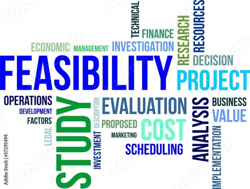 word cloud - feasibility study