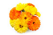 Marigold flowers bouquet