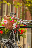 Summer view of bicycles in the Dutch city Amsterdam