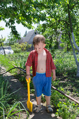 Young boy working in the vegetable garden