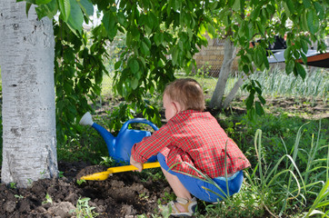 Little boy playing in the vegetable garden