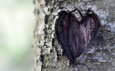 Carved love