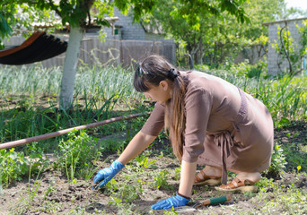 Woman weeding her vegetable garden