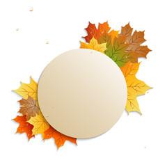 круглый баннер с осенними листьями на белом фоне