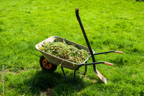 Wheelbarrow on lawn