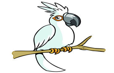white parrot cartoon