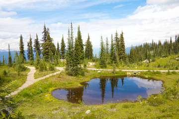 Mount Revelstoke Pond