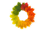 Fototapety Autumn wreath