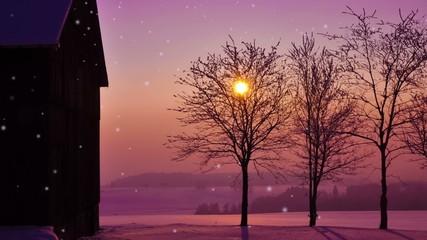 Snowy winter night