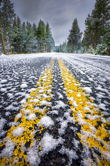 Snow-Covered Road in Yellowstone National Park
