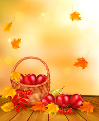 Autumn background with fresh fruit in basket. Healthy Food. Vect