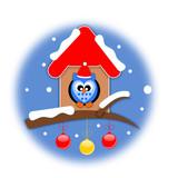 Winter bird on your little house with christmas balls