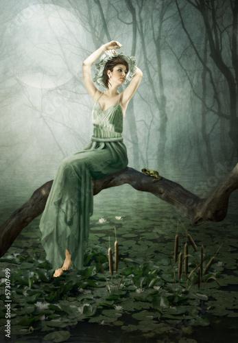 Fototapeten,digital art,traum,fantasy,wald