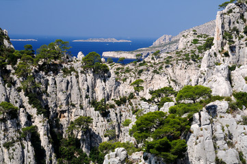 Calanques of Port Pin in Cassis in France