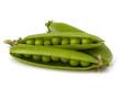 Fresh green pea pod