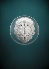 Brain spehere