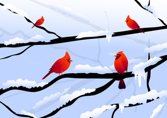Christmas birds & Winter landscape