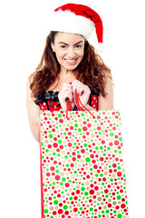 Middle aged woman holding shopping bag