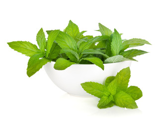 Bowl with fresh mint