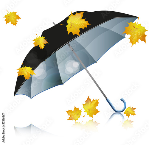 black umbrella with falling leaves
