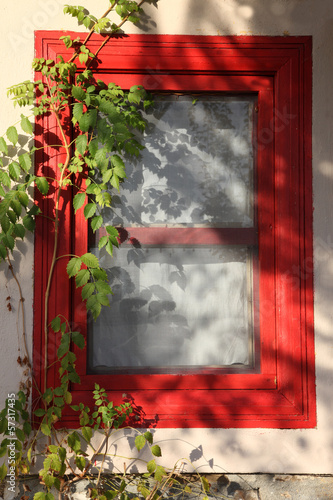 Cute Red Window