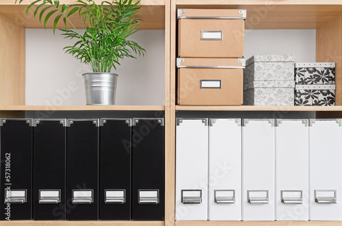 Shelves with boxes, folders and green plant