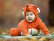 Baby boy dressed in fox costume in autumn park