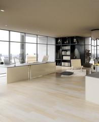 Penthouse Office Area(focus)