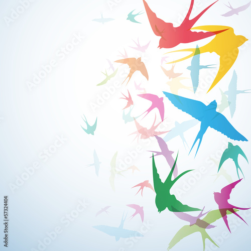 Vector Abstract swallows background