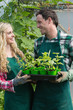 Laughing couple holding carton of small plants