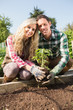 Happy young couple planting a shrub
