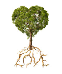 Tree with foliage with the shape of a heart and roots as text Lo