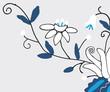 kwiaty kaszubskie 2