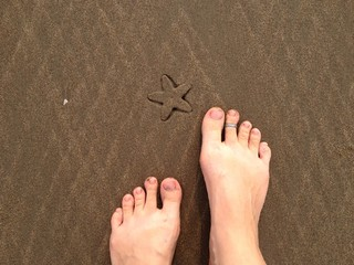 Spotting sea star trace at the Goan beach