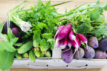 Basket of fresh vegetables and herbs