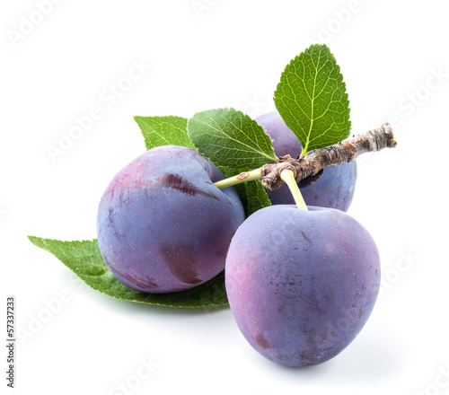 Plum isolated on white