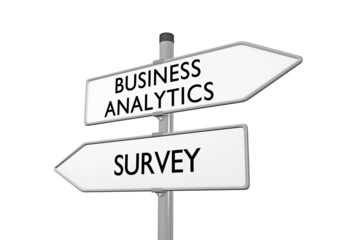 Business Analytics_Survey
