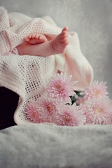 on a pink background legs a little girl and flower