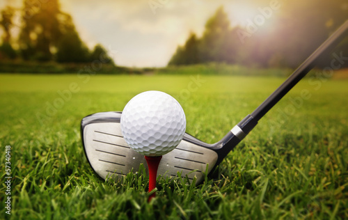 Golf club and ball in grass - 57340418