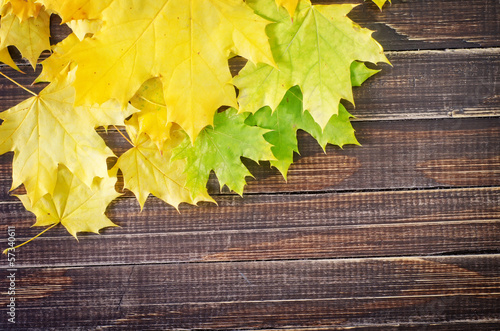 leaves on wooden board