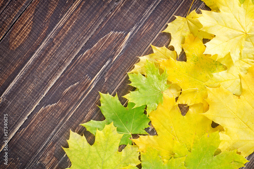 leaves on wooden board