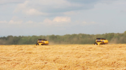 combines harvest in a field