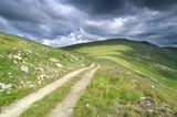 Dirt Road In Pelister National Park, Republic Of Macedonia