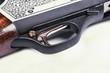 Shotgun and trigger