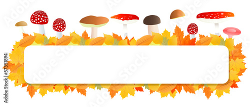 Mushrooms and leaves vector autumn background