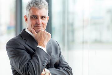 portrait of successful senior businessman