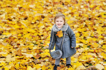 Cute little girl in autumn foliage in a park