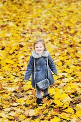 Cute little girl in autumn foliage in a park - full length portr