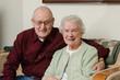 canvas print picture - The Elders