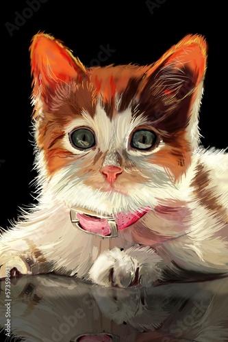Kitten. - 57359693